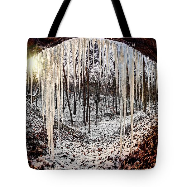 Hinding From Winter Tote Bag