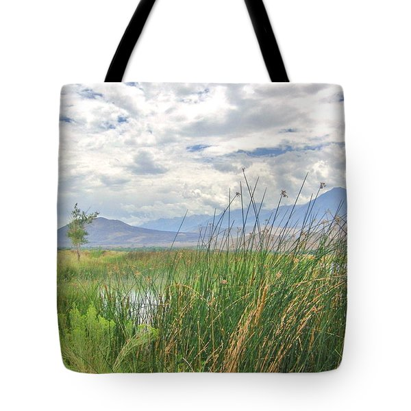 Tote Bag featuring the photograph Hint Of Water by Marilyn Diaz