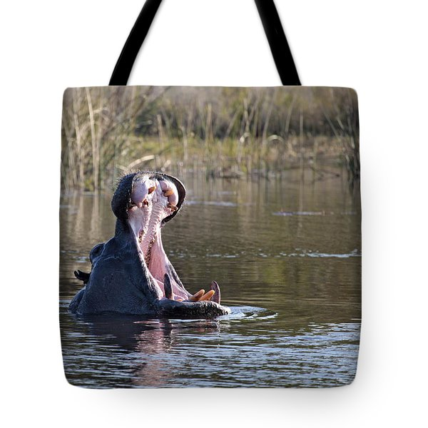 Tote Bag featuring the photograph Hippo Yawning by Liz Leyden