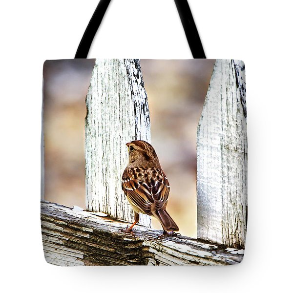 His Eye Is On The Sparrow Tote Bag