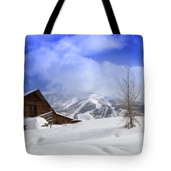 Historic Steamboat Springs Barn Tote Bag by Teri Virbickis