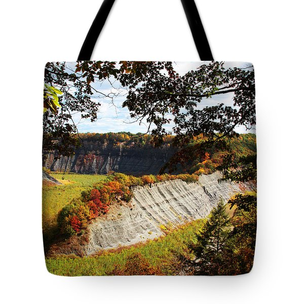 Tote Bag featuring the photograph Hogs Back Overlook by John Freidenberg