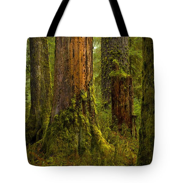 Hoh Rainforest 1 Tote Bag by Joe Doherty