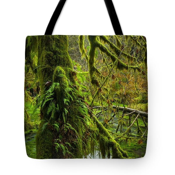 Hoh Rainforest 2 Tote Bag by Joe Doherty