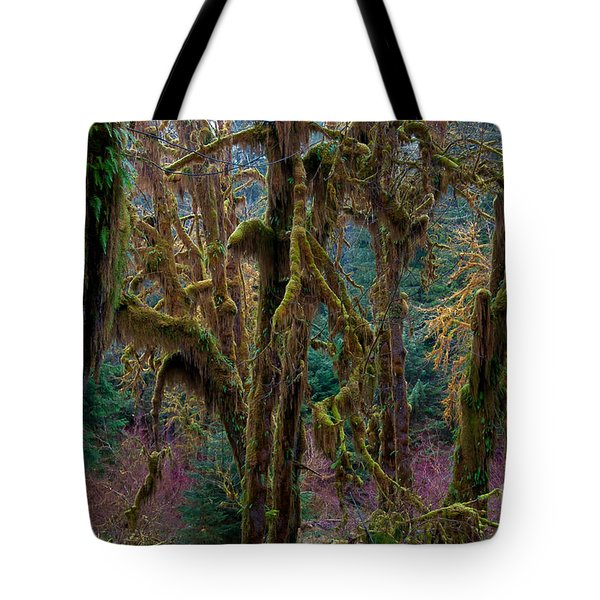 Hoh Rainforest, Olympic National Park Tote Bag by Mark Newman
