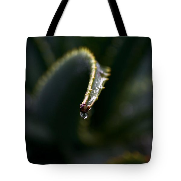 Tote Bag featuring the photograph Hold On by Nadalyn Larsen