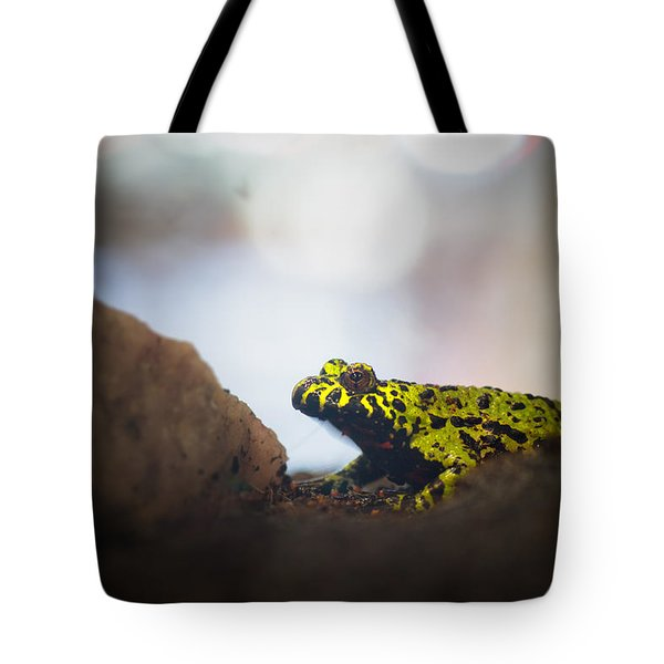 Hold Still Please Tote Bag