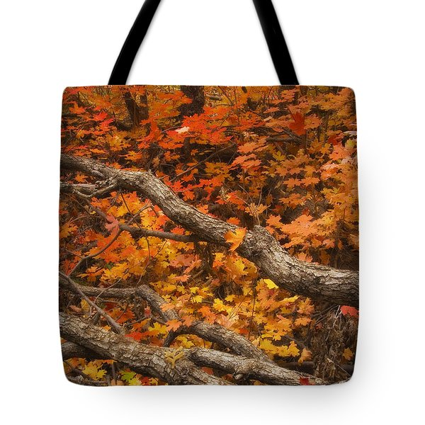 Holding Back Tote Bag by Peter Coskun