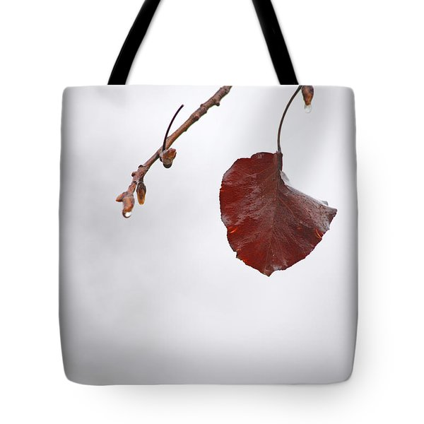 Holding On Tote Bag by Karol Livote