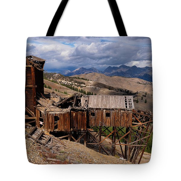 Holding On Tote Bag by Leland D Howard
