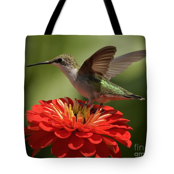 Tote Bag featuring the photograph Holding On by Olivia Hardwicke