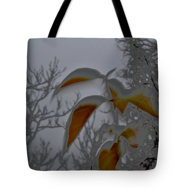Holdouts Tote Bag by Carlee Ojeda