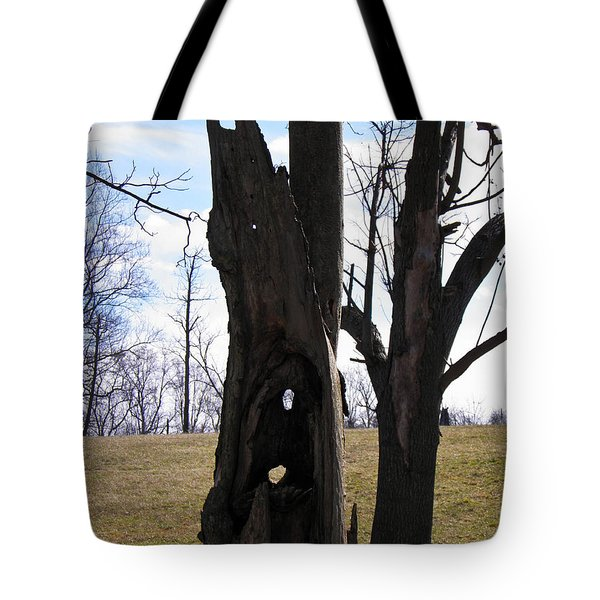 Tote Bag featuring the photograph Holey Tree Trunk by Nick Kirby