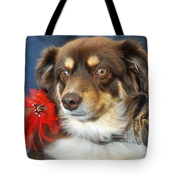 Holiday Portrait Tote Bag by Gwyn Newcombe