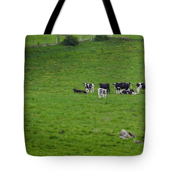 Holsteins Tote Bag by Bill Wakeley