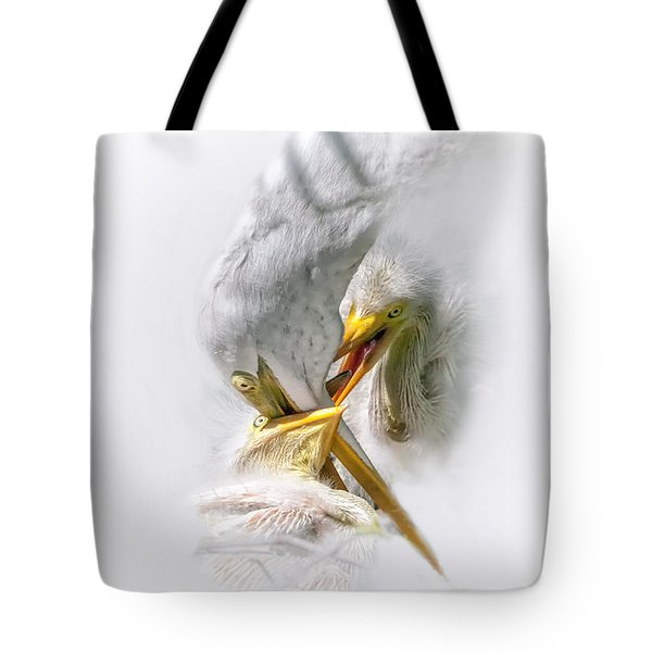 Home Delivery Tote Bag