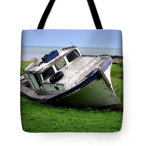 Home To Stay Tote Bag by Ron Haist