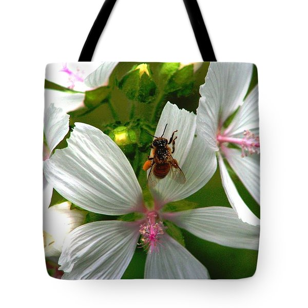 Honey Bee In The Mallow Tote Bag