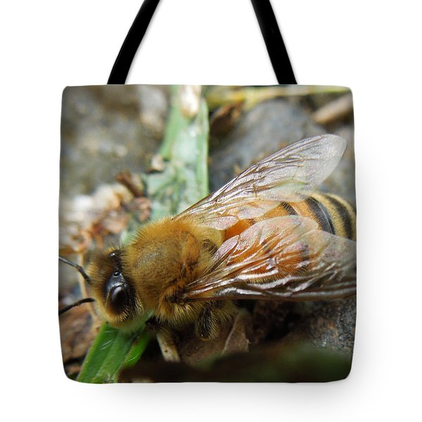 Tote Bag featuring the photograph Honey Bee by Pete Trenholm