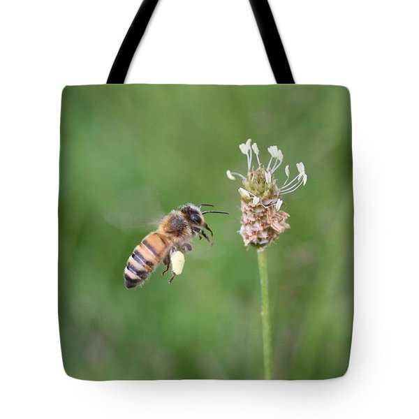 Honeybee And English Plantain Tote Bag