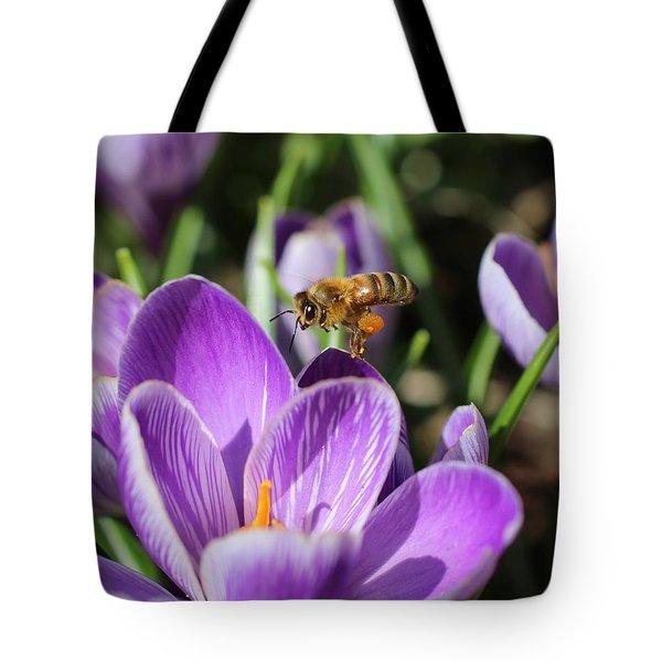 Honeybee Flying Over Crocus Tote Bag