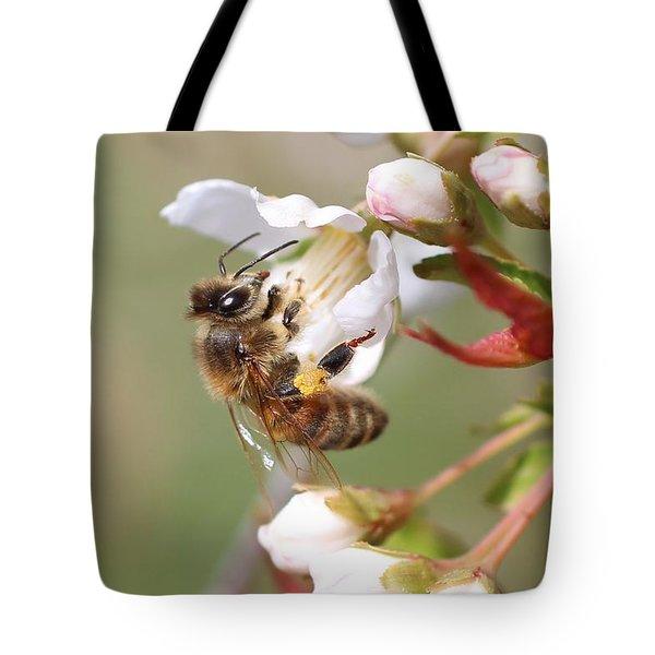 Honeybee On Cherry Blossom Tote Bag