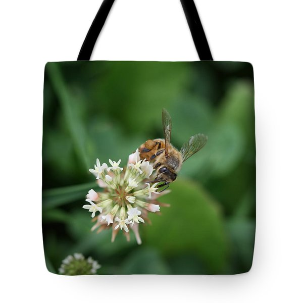Honeybee On Clover Tote Bag