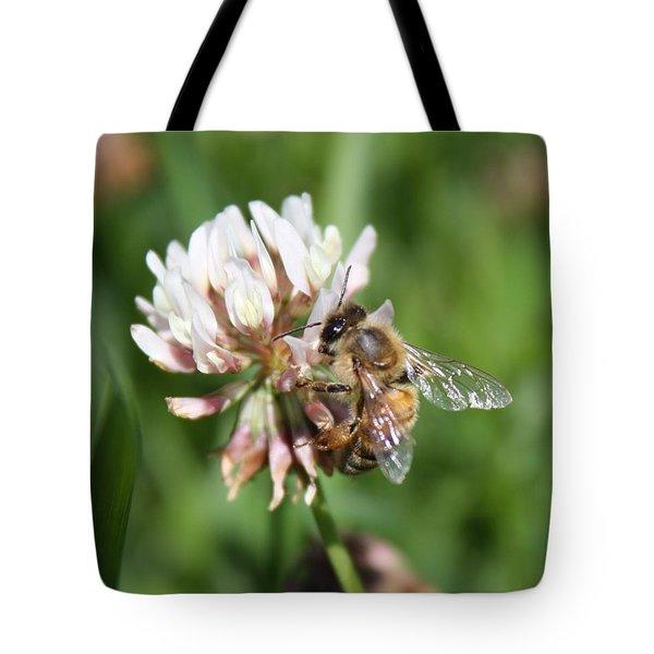 Honeybee On Clover Tote Bag