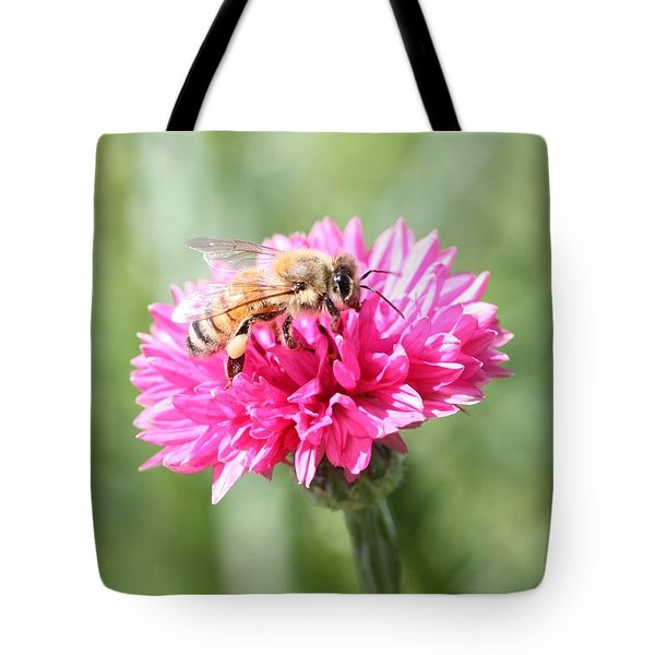Honeybee On Pink Bachelor's Button Tote Bag