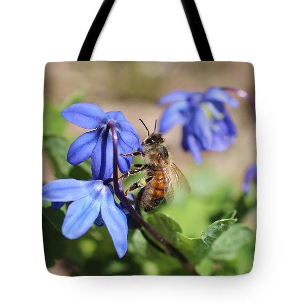 Honeybee On Siberian Squill Tote Bag