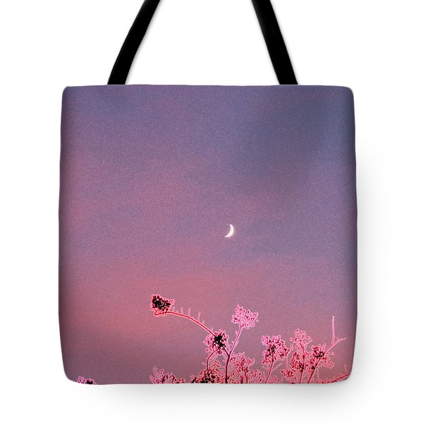Honeymoon By Jrr Tote Bag by First Star Art