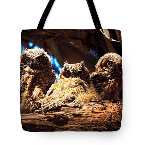 Hoo Are You Tote Bag