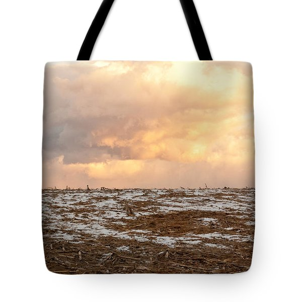 Hope For The Desolate Tote Bag