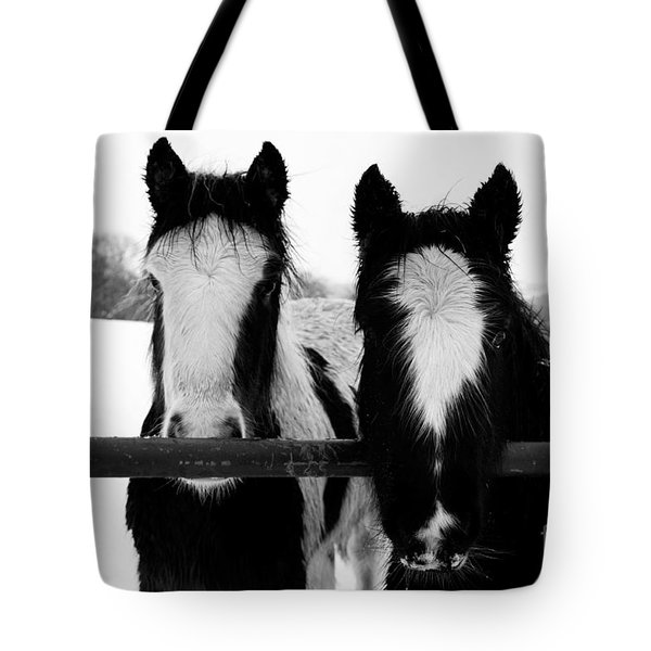 Hopeful Tote Bag by Anne Gilbert