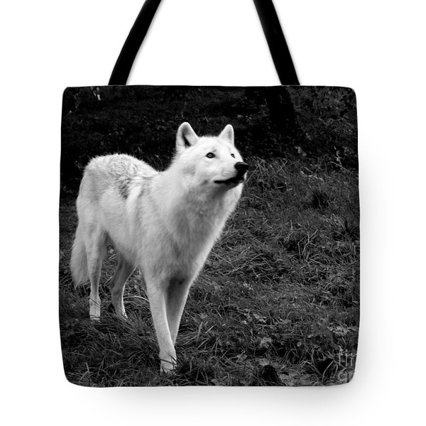 Tote Bag featuring the photograph Hopeful by Vicki Spindler