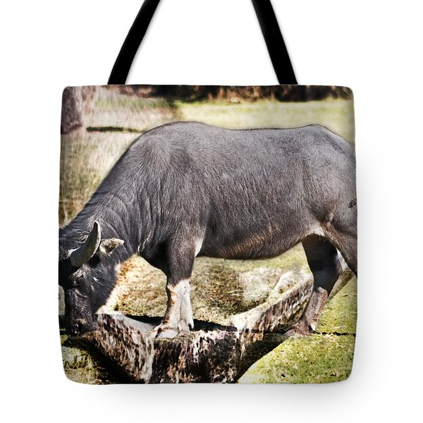 Horn Of A Buffallo Tote Bag