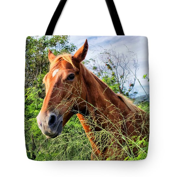 Tote Bag featuring the photograph Horse 1 by Dawn Eshelman