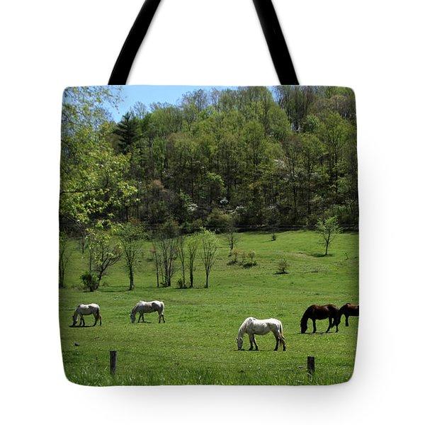 Horse 27 Tote Bag