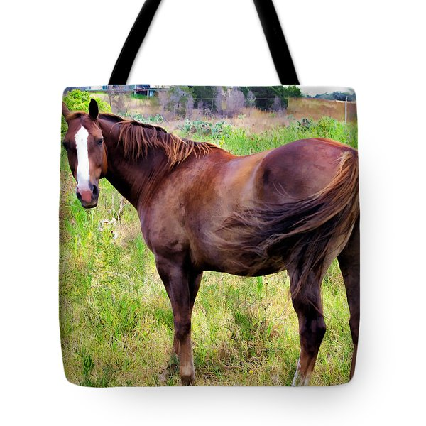 Tote Bag featuring the photograph Horse 5 by Dawn Eshelman