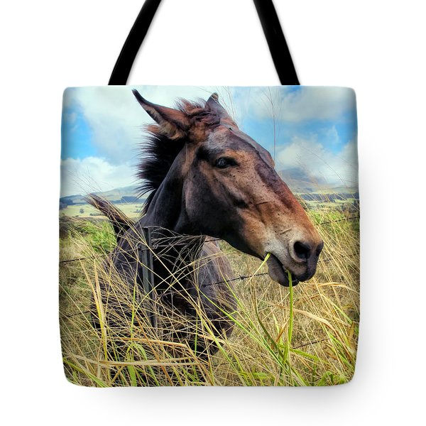 Tote Bag featuring the photograph Horse 6 by Dawn Eshelman