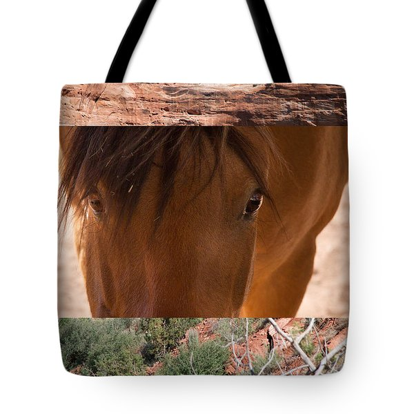 Horse And Canyon Tote Bag
