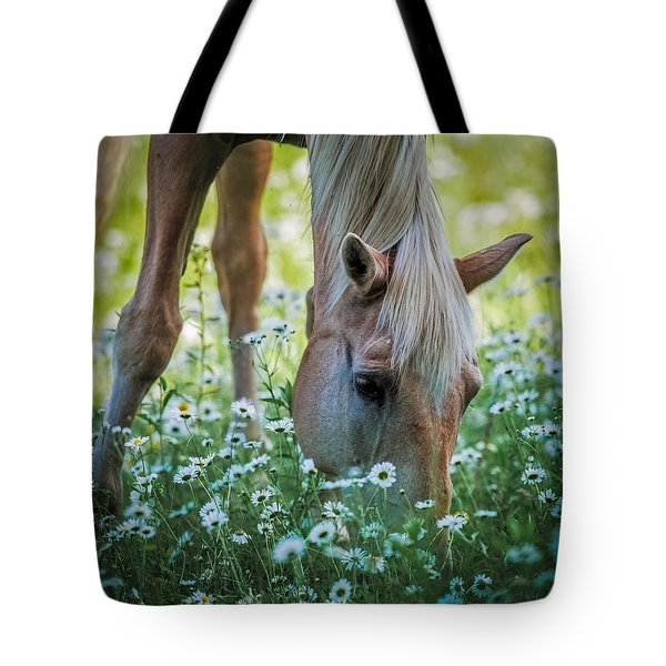 Horse And Daisies Tote Bag by Paul Freidlund