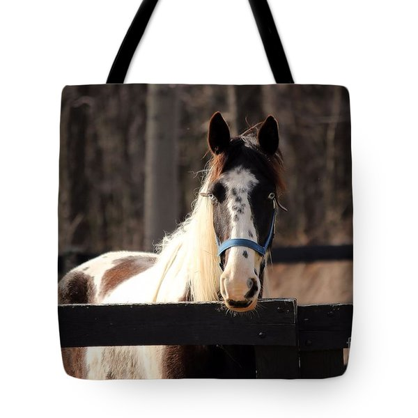 Horse At The Gate Tote Bag