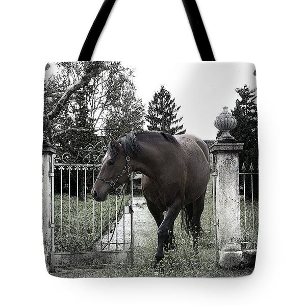 Horse In Europe Tote Bag by Christine Sponchia