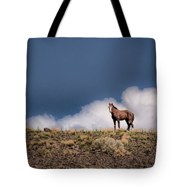 Tote Bag featuring the photograph Horse In The Clouds  by Janis Knight