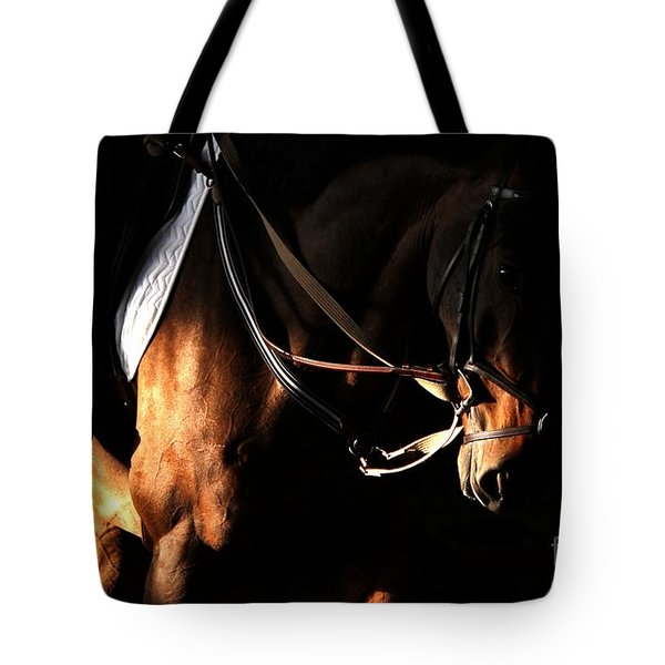 Horse In The Shade Tote Bag