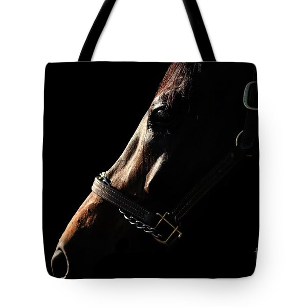 Horse In The Shadows Tote Bag