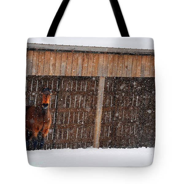 Horse Looking At Snow Storm Tote Bag by Dan Friend