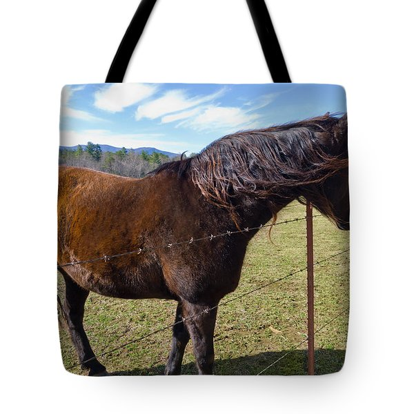 Horse Tote Bag by Melinda Fawver