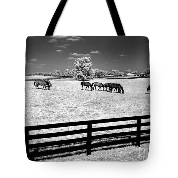 Tote Bag featuring the photograph Horse Pasture Infrared by Martin Konopacki